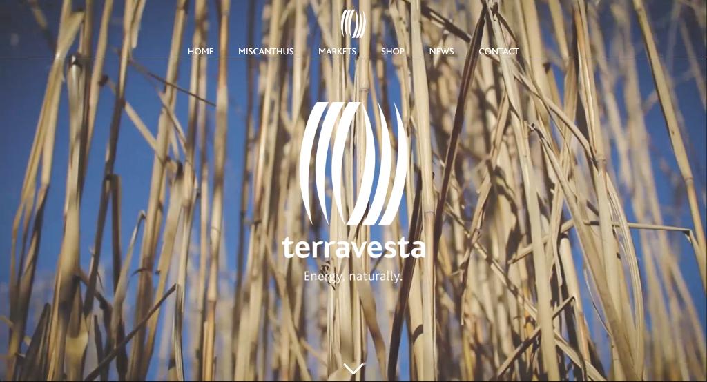 Terravesta 2018 jul